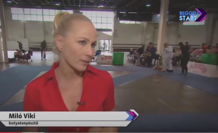 Interjú Miló Vikivel